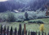Aasen homestead